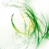 Fond gamme plantes ahava